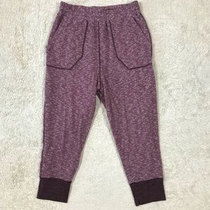 Intimately Free People Sweat-pant Jogger  (L)